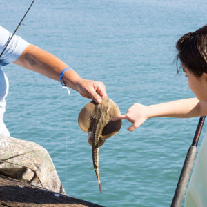 strearns_wharf_bait_and_tackle_fishing